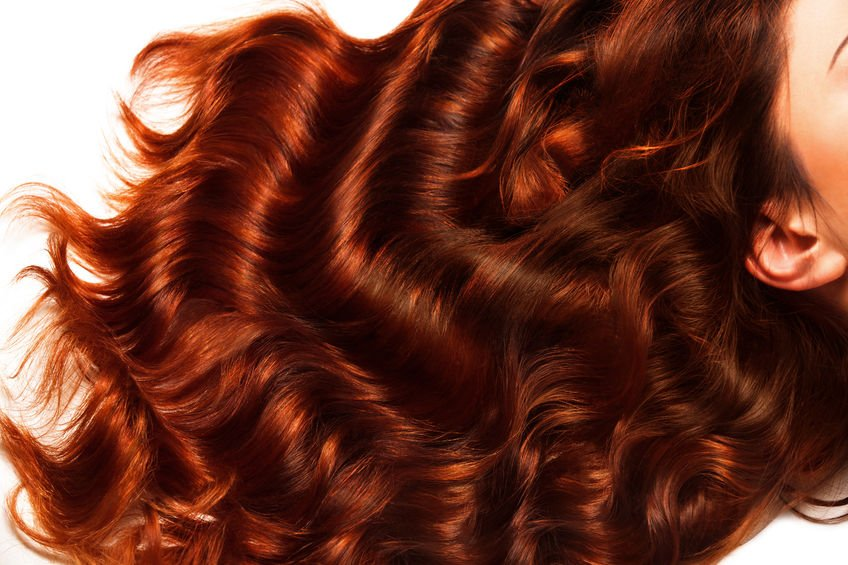 38687895 - brown curly hair texture. high quality image.