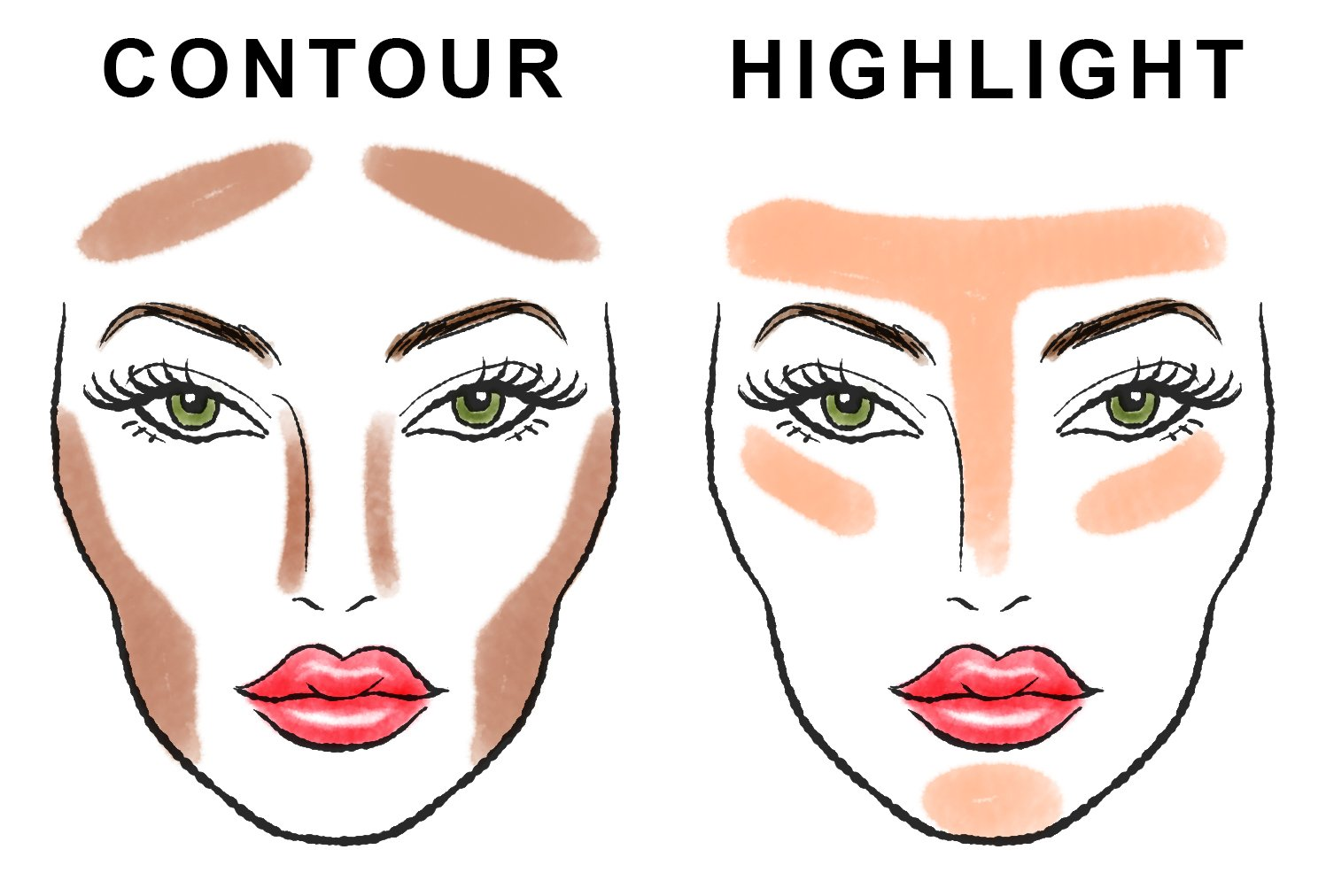 Your Step By Step Guide To The: Step-by-Step Guide: Contour And Highlight Your Face
